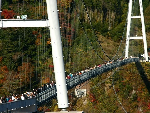 hanging_bridge