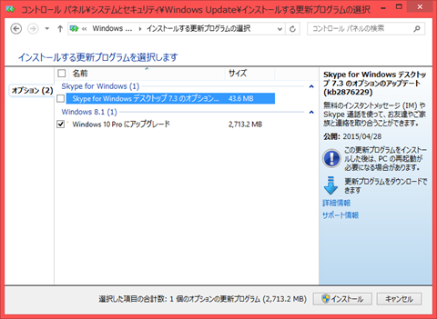 Windows10_option