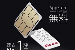 FREETEL_SIM_for_iPhone.jpg