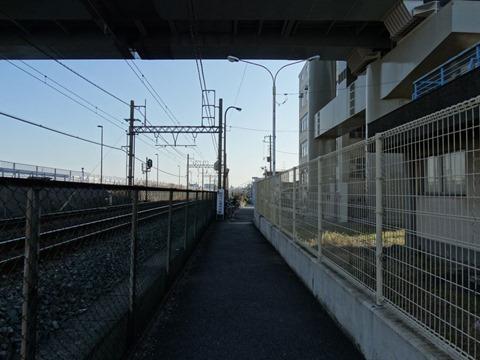 Sumidagawa-Shitifukujin-Photo-03