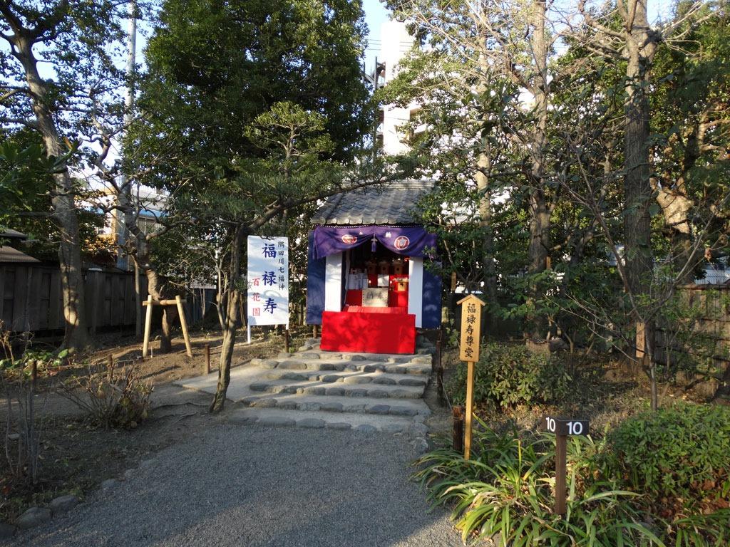 Sumidagawa-Shitifukujin-Photo-11.jpg
