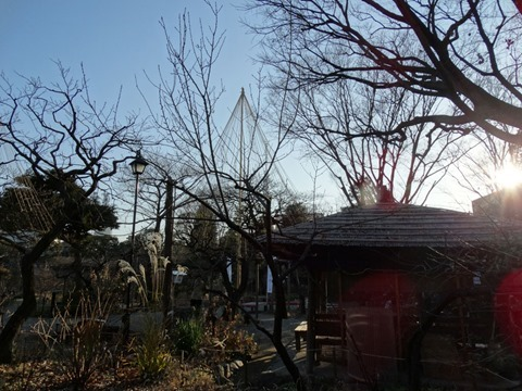 Sumidagawa-Shitifukujin-Photo-12