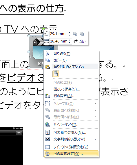 MS-Word2010-06