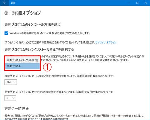 Windows10-Pro-avoid-big-update-12