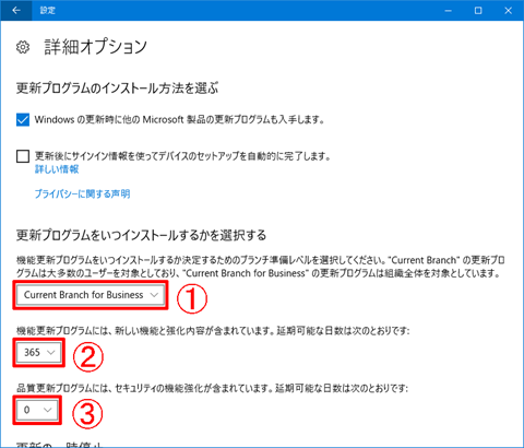 Windows10-Pro-avoid-big-update-21