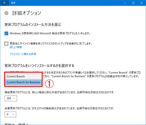 Windows10-Pro-avoid-big-update-22