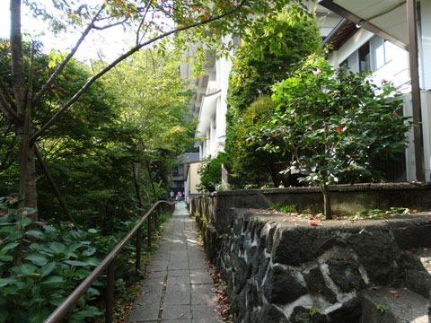 Mount-Takao-and-Yakuouin-12