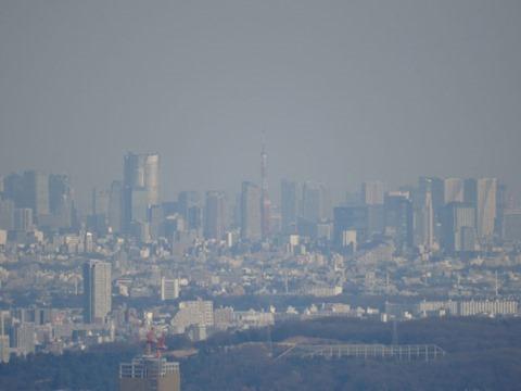 Mount-Takao-and-Yakuouin-17