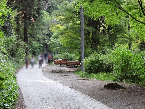 Photo-from-Mount-Takao-and-DSC-HX300-03