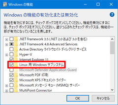Windows10-v2004-WSL2-11