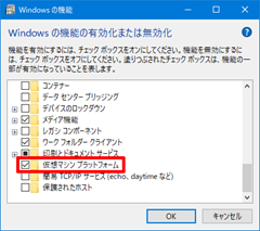 Windows10-v2004-WSL2-12